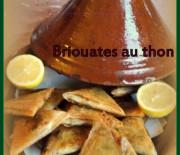 Briouates au thon ou brick en triangle + tuto